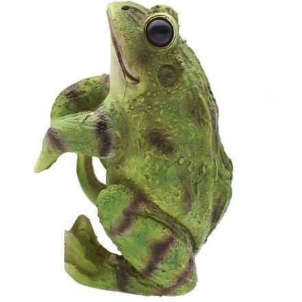 Plant Pot Pals - Frog