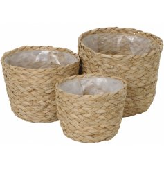 A set of 3 on trend rattan planters with a plastic lining. Add simple style to the home with these gorgeous pots.