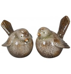A mix of 2 beautifully detailed bird ornaments. Complete with a rich glaze finish.