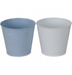 An assortment of 2 blue and white dotty planters. Each has a lovely, textured surface finish.