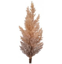 A chic single artificial pampas grass stem with a unique brown ombre finish. A must have for the style savvy.