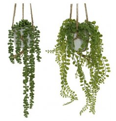 An assortment of 2 fine quality hanging artificial plants. Each has rustic string and comes in an attractive pot.