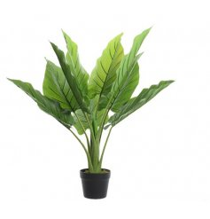 A large and richly coloured artificial Strelitzia plant with black pot.