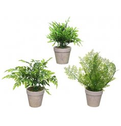 A mix of 3 potted artificial fern plants. An attractive accessory for the home or garden.