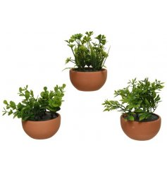 An assortment of 3 stylish artificial plants, each set within a pot.