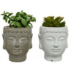 A mix of 2 grey and white buddha pots filled with fine quality artificial succulents.