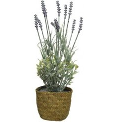 A fine quality artificial lavender plant set neatly within a woven seagrass pot.