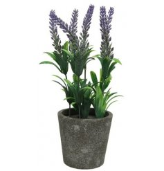 An authentic artificial lavender plant potted in a grey rustic pot.