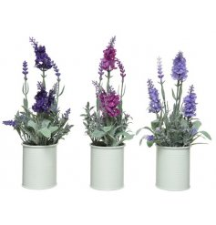 An assortment of 3 pink and purple artificial lavender plants. Complete with a cream metal pot.