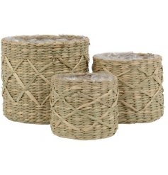 A set of 3 natural seagrass planters, each with a chic diamond design. Each is lined with recycled plastic.
