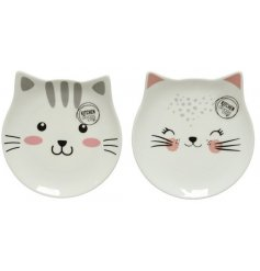 A mix of 2 contemporary porcelain plates featuring cute cat faces.