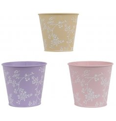 An assortment of 3 pastel coloured planters, each with a pretty white floral design.