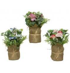 An assortment of 3 pretty pastel coloured flowers set within a pot. Complete with a rustic hessian wrap and raffia bow