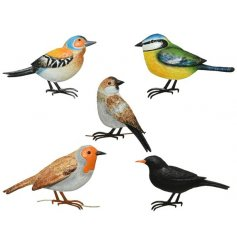 Colourful and beautifully detailed iron birds for displaying on the wall inside or outside of the home.