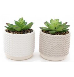 An assortment of charmingly simple ceramic based pots set with ridged decals and a neutral colour tone