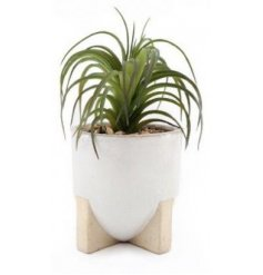 Sure to bring a simplistic charm to any home space, an artificial succulent in a ceramic pot with a footed base