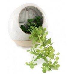 a circular pot with a draping artificial succulent