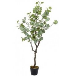 A large potted Artificial Eucalyptus Tree with a realistic look to the leaves and branches