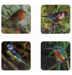 An assortment of 4 cork based coasters, each decorated with a colourful bird print