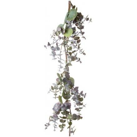 Natural Toned Mixed Eucalyptus Branch