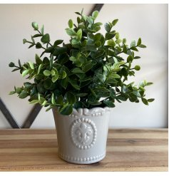 Perfect for bringing a vintage charm to any home space, a grey toned glazed pot with a pretty fleur de lis embossment