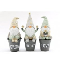 Sure to bring a quirky character charm to your flower beds and garden spaces, an assortment of sitting gnomes