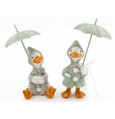 A charming assortment of posed resin duck ornaments, each dressed in raincoats and holding umbrellas