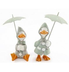 Assorted by their standing and sitting poses, these delightful little duckies will be sure to bring a fun character char