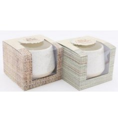 An assortment of beautifully simple themed ceramic candle pots, each filled with a fresh scented fragrance