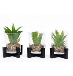 Each set within a black block based pot, these assorted artificial succulents are sure to bring a trendy touch to your h