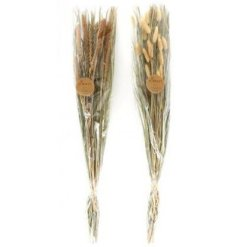 this assortment of naturally dried Grass Bunches will be sure to bring a trendy touch to any home