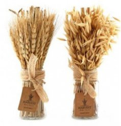 An assortment of naturally dried Avana Grass Bunches, perfect for bringing to any home with a Country Charm setting