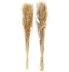 An assortment of naturally dried Avana Grass, perfect for bringing to any home with a Country Charm setting