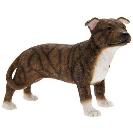 Staffordshire Bull Terrier Dark Brown, 15cm