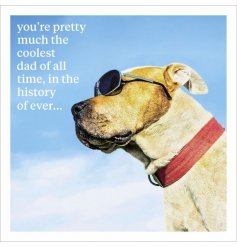 A humorous greetings card with HD Animal photo image.