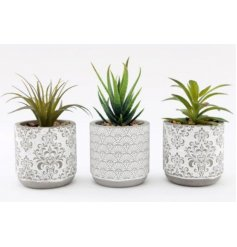 A beautiful assortment of terracotta based pots with charming grey and white printed decals