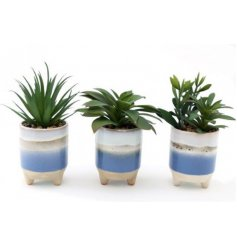 An assortment of artificial succulents, each potted within a ceramic pot with a reactive blue and white glaze