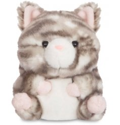 A super cute and squishy tabby cat soft toy named Lucky