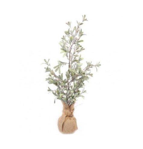 Individual christmas plant with mistletoe design