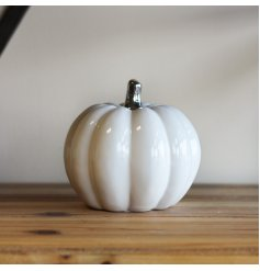A sleek, simple and stylishly set ceramic pumpkin with a silver stem to finish