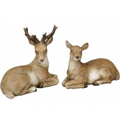 An assortment of posed Stag and Deer Ornaments, beautifully detailed with natural tones and realistic features