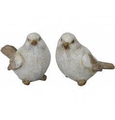 An assortment of posed bird Ornaments, beautifully detailed with natural tones and realistic features