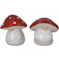 An assortment of fun and festive Gnomes complete with traditional beards and Toadstool hats
