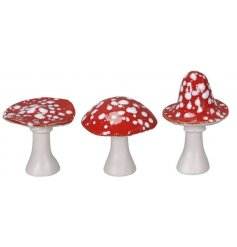 A mix of ceramic based mushrooms, perfectly set with traditional toadstool colours and a sleek glaze finish