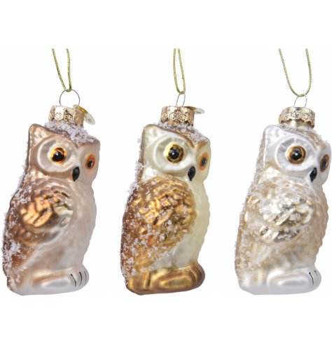 A festive mix of glass owl shaped baubles, featuring added gold tones and glittery hints