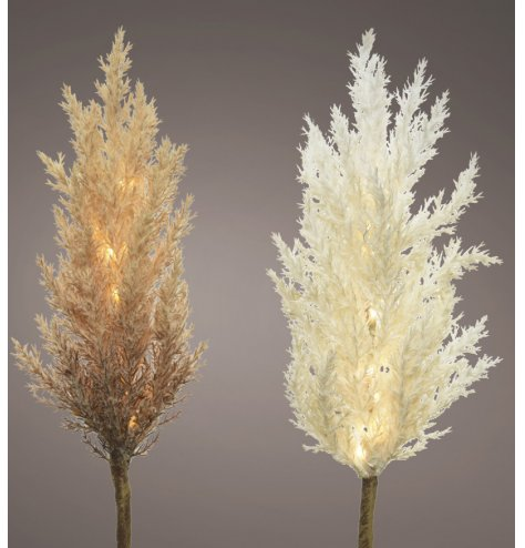 A boho inspired mix of fluffy pampas stems with neutral colour tones and charming LED lights entwined within