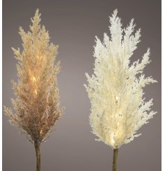 A mix of extra fluffy looking pampas stems, beautifully entwined with warm glowing LED lights