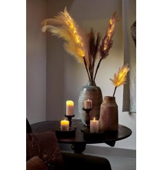 natural toned pampas stems with LED lights entwined