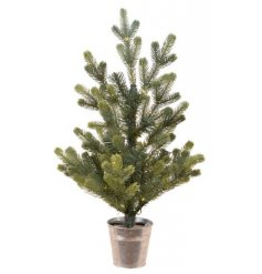 LED Metal Potted Tree, 45cm    A stunning and full foliage Geneva Tree complete with added led lights and set within a s