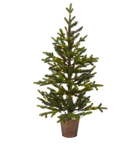 A fabulous full festive potted Queensland Mino tree,  perfect for dressing with your own accessories. Suitable for Indoo